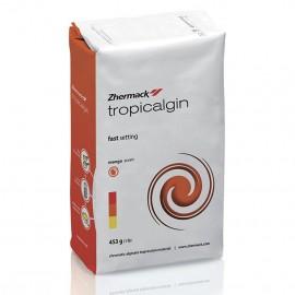 ALGINATO TROPICALGIN 453 g